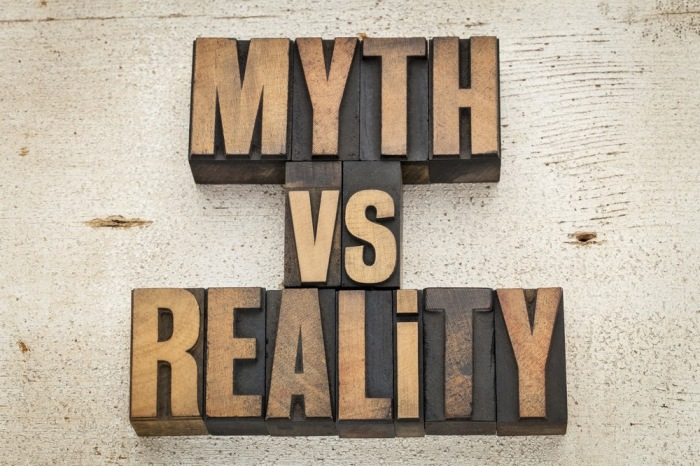 How To Separate Learning Myths from Reality by Artin Atabaki, Stacey Dietsch, & Julia Sperling(2015)